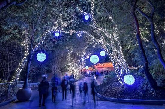 Projeto Luzes de Natal – Amigos do Turismo