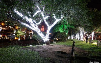 Projeto Luzes de Natal – Amigos do Turismo 2019
